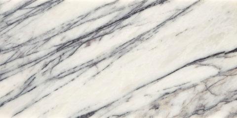 Calacatta Viola Honed Marble