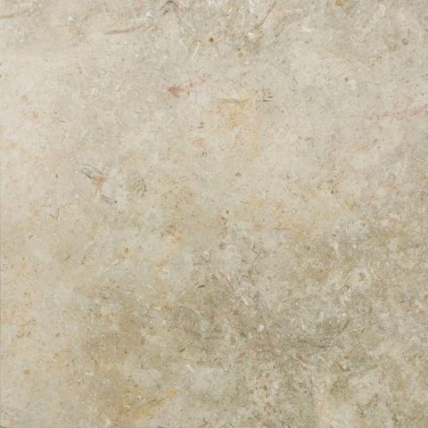 Jerusalem White Gold Honed Limestone