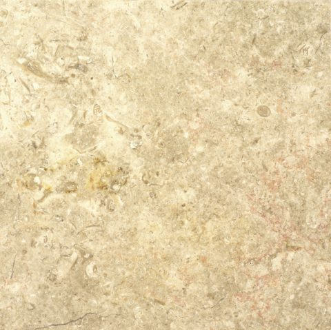 Jerusalem White Gold Polished Limestone