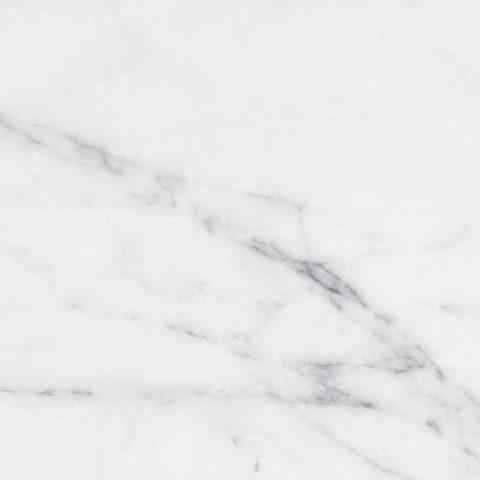 Calacatta Vein Honed Marble