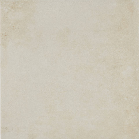 Darwin White Base Decorative Porcelain